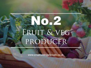 Fruit and Veg Producer Smallholding