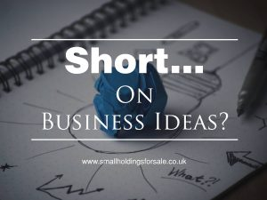 Short On Smallholdings Business Ideas